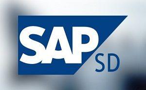 SAP SD Training Institutes
