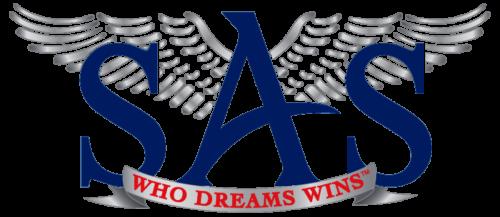SAS Online training In India