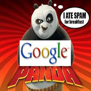 seo submission spam