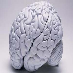 Experts Tips to Improve Memory Power